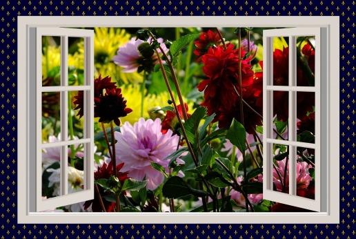 a-beautiful-day-775461_1920